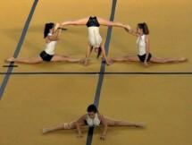 Τμήμα Ενόργανης Γυμναστικής