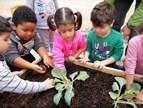 Δημιουργία Λαχανόκηπων στους Δημοτικούς Παιδικούς Σταθμούς!