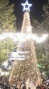 Στιγμιότυπα από την τελετή φωταγώγησης του Χριστουγεννιάτικου Δέντρου
